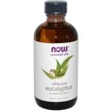 Масло евкаліпта для волосся. 4 ефективних домашні рецепти масок для лікування і зміцнення волосся