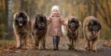 Зворушливі знімки маленьких дітей і їх великих друзів (Фото)